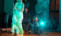 flamenco04.jpg